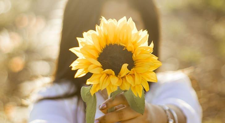 夏の定番ひまわりを咲かせよう