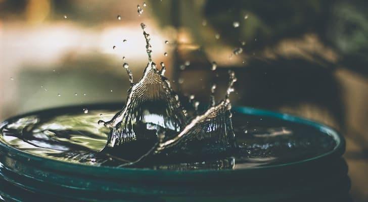 ひまわりの水やりの頻度