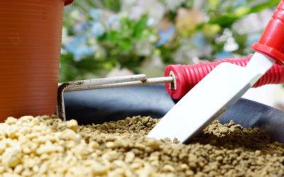鹿沼土(かぬまつち)とは?赤玉土との違いや、基本的な使い方・特徴について。